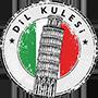 dil_kulesi_logo_90